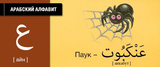 Паук на арабском языке. Карточки арабского языка.