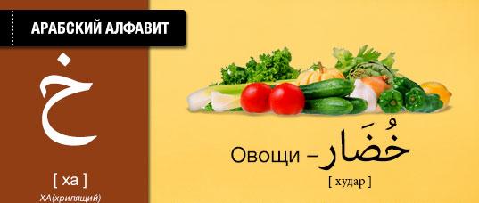 Овощи на арабском языке. Карточки арабского языка.