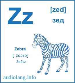 Английский алфавит буква Z.