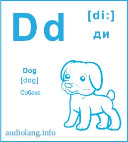 Английский алфавит буква D.