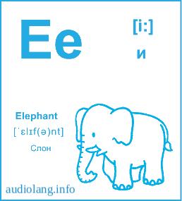 Английский алфавит буква E.
