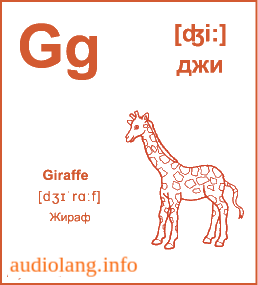 Английский алфавит буква G.