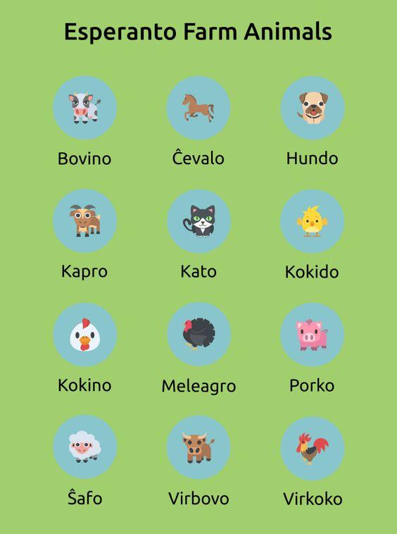 Карточки эсперанто