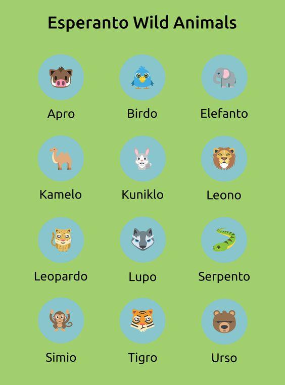 Интересно про эсперанто