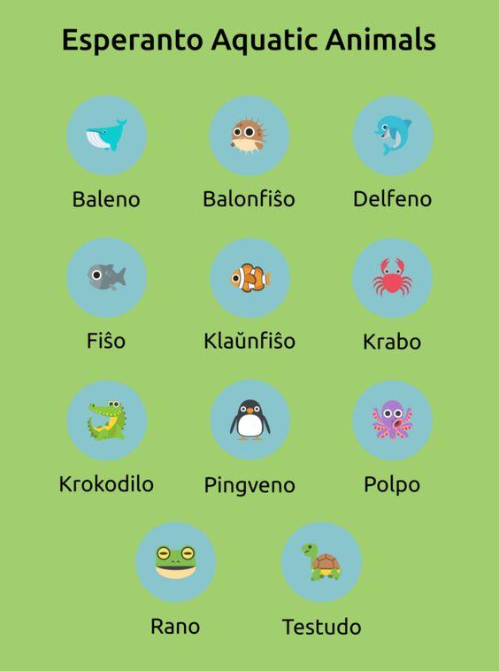 Эсперанто - учить бесплатно