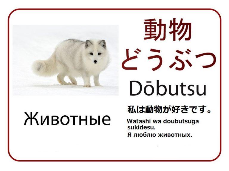 Животные на японском языке. Бесплатные карточки.