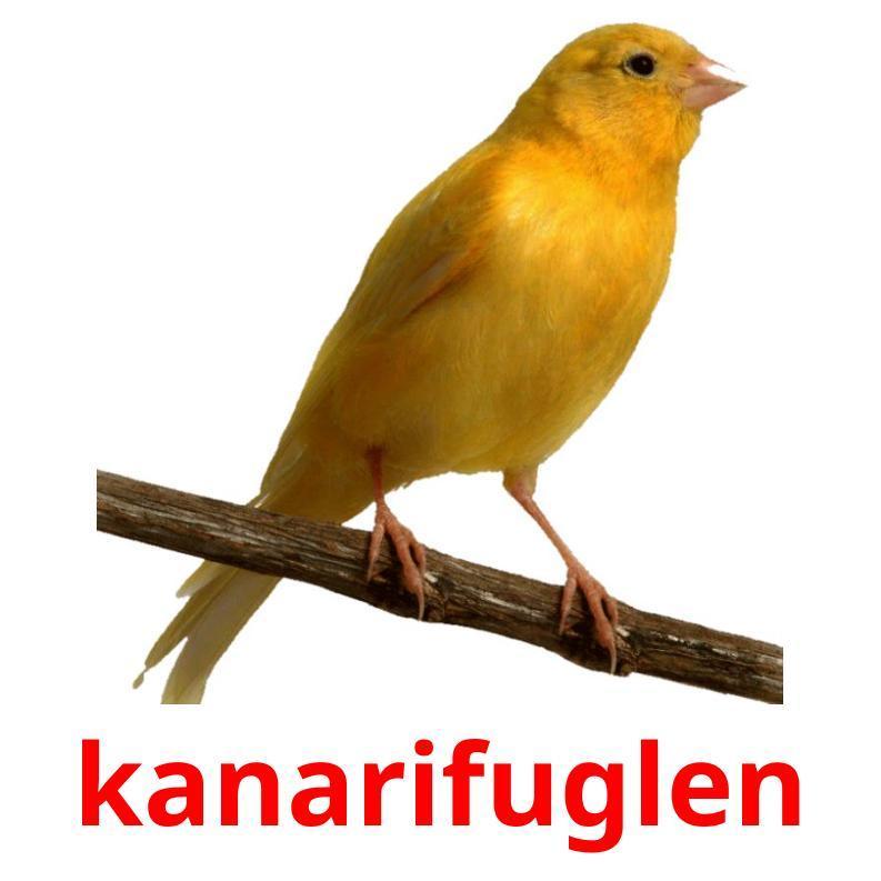 Карточки по норвежскому языку