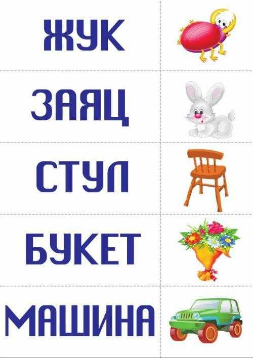 Визуальный словарь русского языка