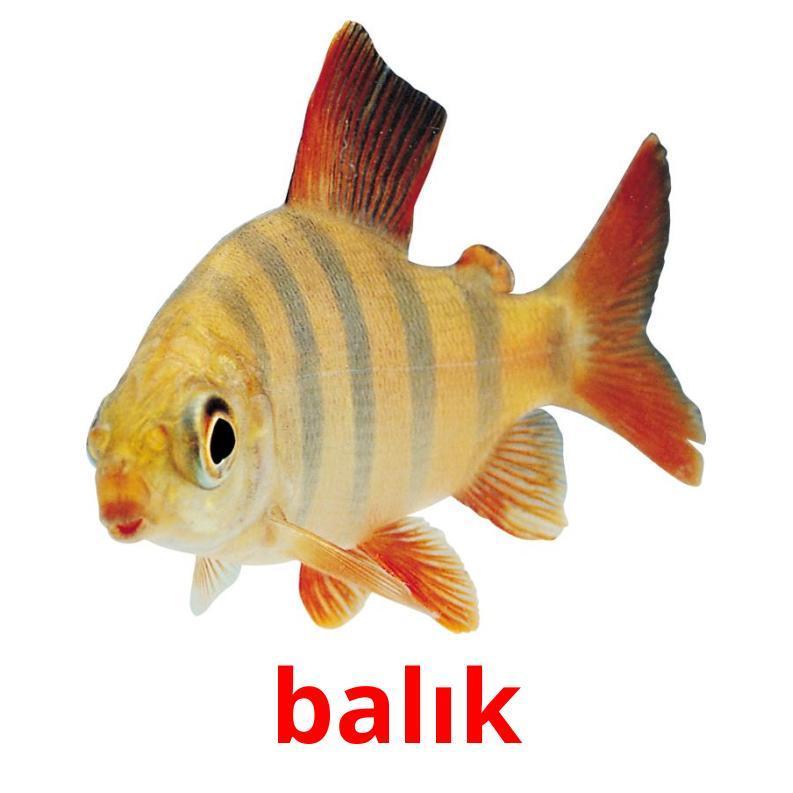 Карточки по турецкому языку